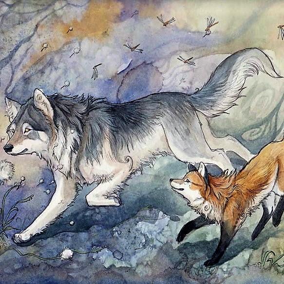 картинки я люблю волка от лисы приятно